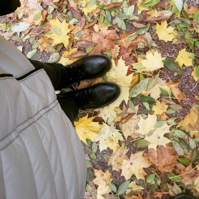 Der goldene Herbst Jesie